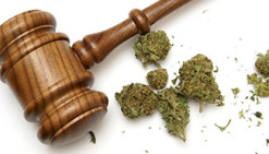 Drug Possession Attorney Tampa