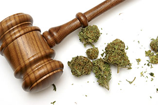 Tampa Drug Possession Attorney